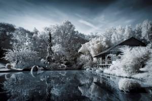 photo-infrarouge-photographie-infrared-arnaud-cassagnet-3