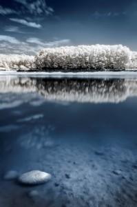 photo-infrarouge-photographie-infrared-arnaud-cassagnet-4