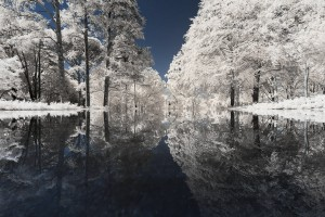photo-infrarouge-photographie-infrared-binet-pierre-louis-ferrer-6