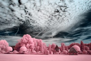photo-infrarouge-photographie-infrared-binet-raphaele-goujat-11