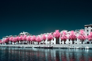 photo-infrarouge-photographie-infrared-binet-raphaele-goujat-7