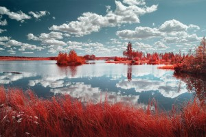 photo-infrarouge-photographie-infrared-binet-yann-philippe-5