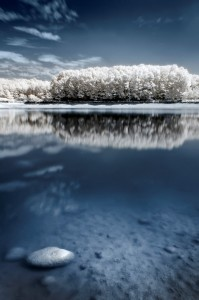 photo-infrarouge-photographie-infrared-pierre-arnaud-cassagnet-4