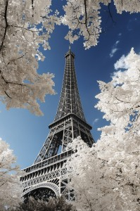 photo-infrarouge-photographie-infrared-pierre-louis-ferrer-3 (1)