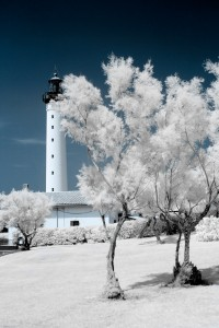 photo-infrarouge-photographie-infrared-raphaele-goujat-2