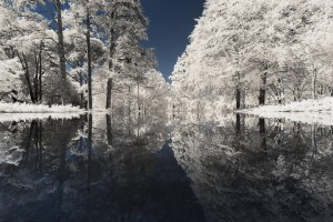 photo-infrarouge-photographie-infrared-reuilly-pierre-louis-ferrer-4