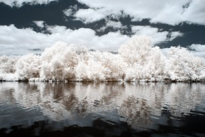 photo-infrarouge-photographie-infrared-reuilly-raphaele-goujat-3