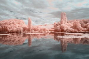 photo-infrarouge-photographie-infrared-reuilly-raphaele-goujat-4