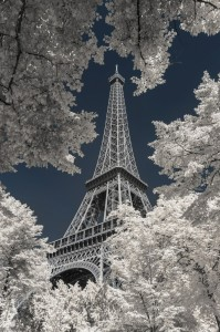 photo-infrarouge-photographie-infrared-simonlefranc-pierre-louis-ferrer-4