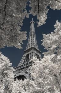 photo-infrarouge-photographie-infrared-simonlefranc-pierre-louis-ferrer-4