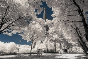 photo-infrarouge-photographie-infrared-simonlefranc-pierre-louis-ferrer-7