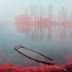 photo-infrarouge-photographie-infrared-simonlefranc-yann-philippe-10