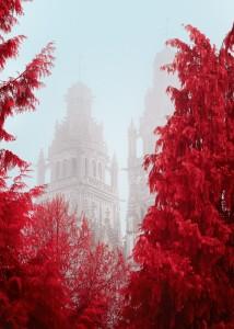 photo-infrarouge-photographie-infrared-simonlefranc-yann-philippe-4