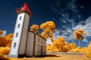 photo-infrarouge-photographie-infrared-vincent-hedou-1