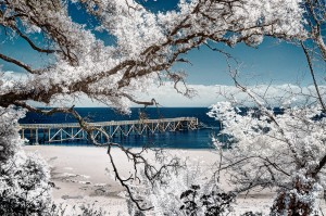 photo-infrarouge-photographie-infrared-yann-philippe-3