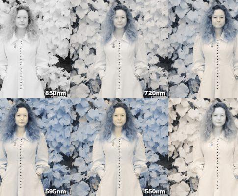 Le portrait en infrarouge